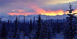 Alaska Sunset small.jpg